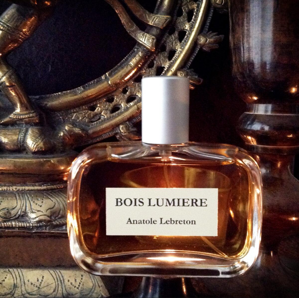 2014-12-08-Bois-Lumière-1-recadrée1