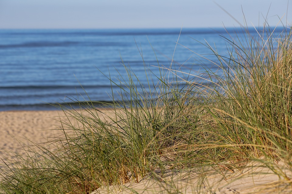 beach-1721031_960_720