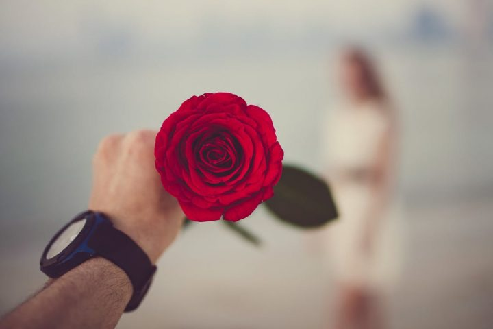 https://www.pexels.com/photo/person-holding-red-rose-selective-focal-photo-1534624/