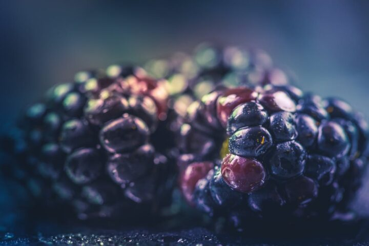 https://www.pexels.com/photo/selective-focus-photography-of-purple-fruit-870066/