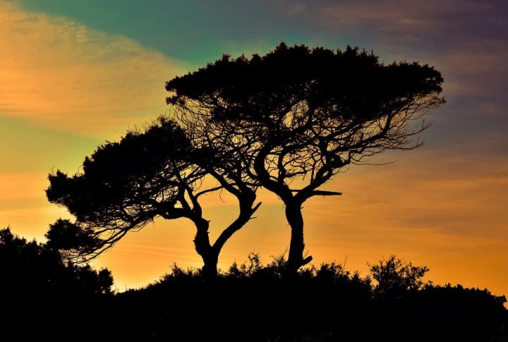 https://pixabay.com/de/photos/zypern-cavo-greko-nationalpark-1990939/