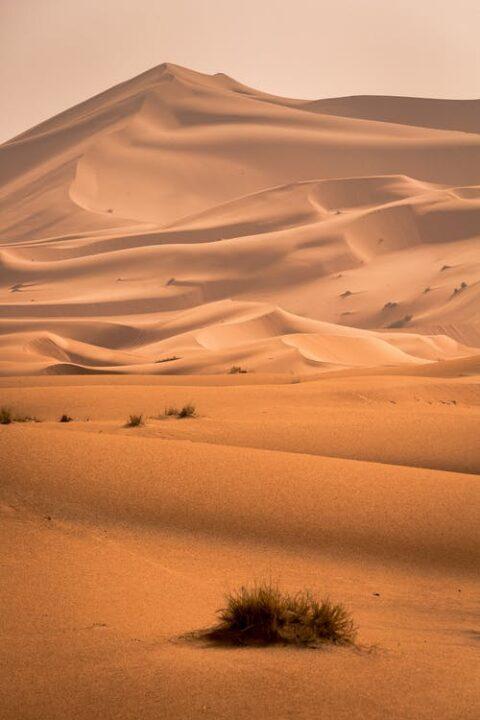 https://www.pexels.com/photo/desert-1731660/