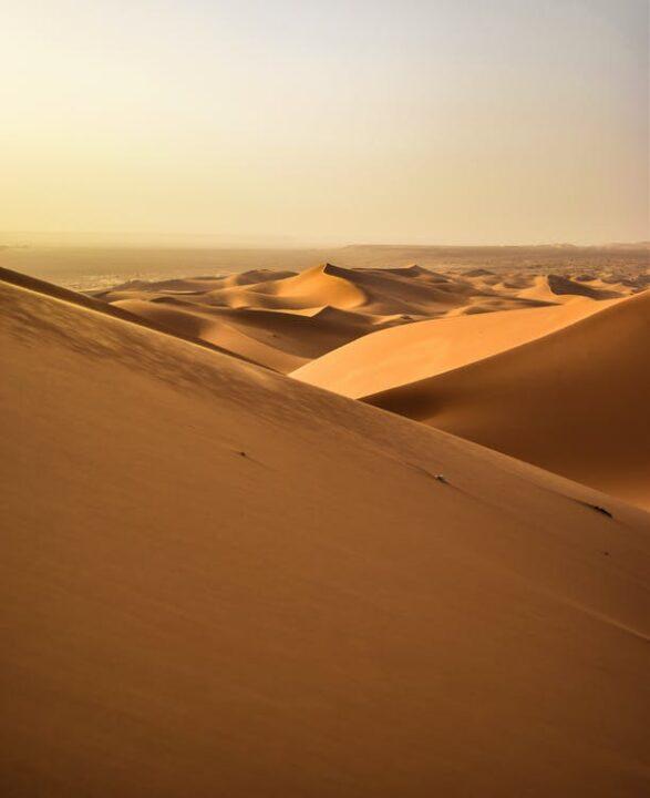 """rabischen wird die Sahara الصحراء الكبرى, DMG aṣ-ṣaḥrāʾ al-kubrā, """"die große Wüste"""" genannt. Bisweilen findet man auch den Namen بحر بلا ماء, DMG baḥr bilā māʾ, """"Meer ohne Wasser"""" (vgl. Sahel für """"Ufer""""). Die antiken Römer nannten das Land südlich von Karthago Terra deserta, also """"verlassenes Land"""". Im Mittelalter nannte man die Sahara schlicht Große Wüste. Erst im 19. Jahrhundert hat sich die Bezeichnung Sahara du"""