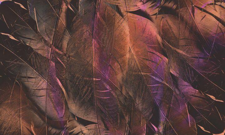 https://pixabay.com/de/photos/abstrakt-form-muster-textur-farbe-4431626/
