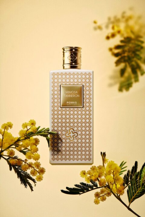 Perris Monte Carlo – Mimosa Tanneron