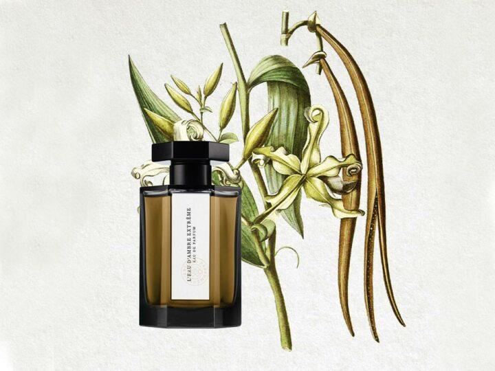 L'Eau d'Ambre Extrême – L'Artisan Parfumeur