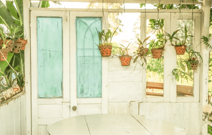 https://www.pexels.com/photo/green-leafed-plants-potted-on-pots-2466486/