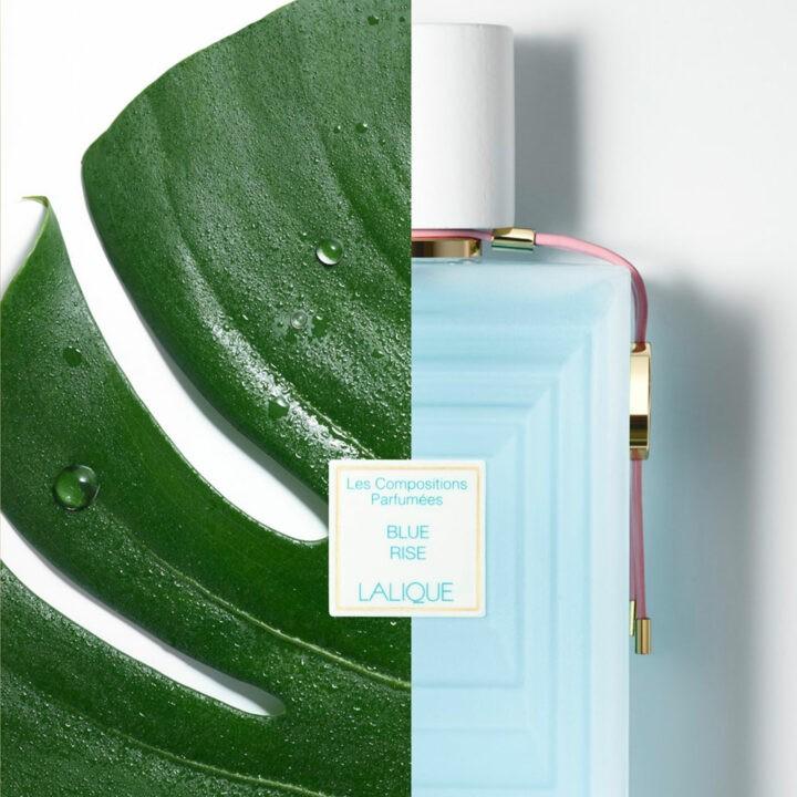 Lalique – Blue Rise