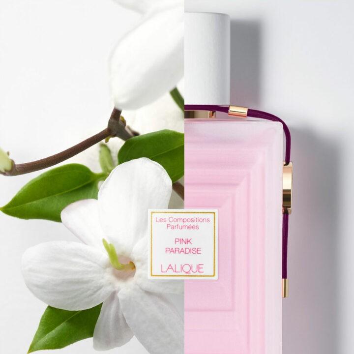 Lalique – Pink Paradise