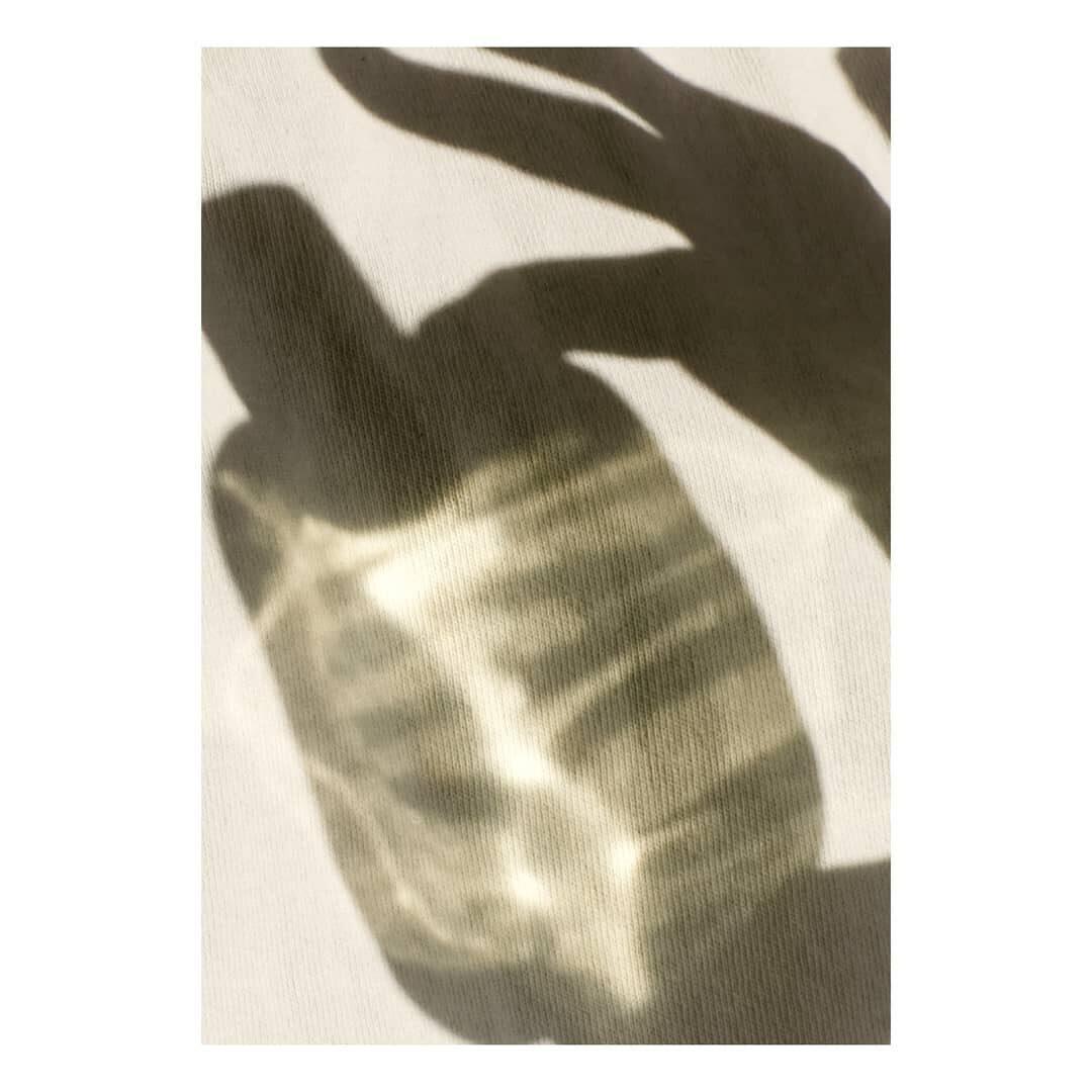 Schattenspiel mit Flakon von Obvious Parfums